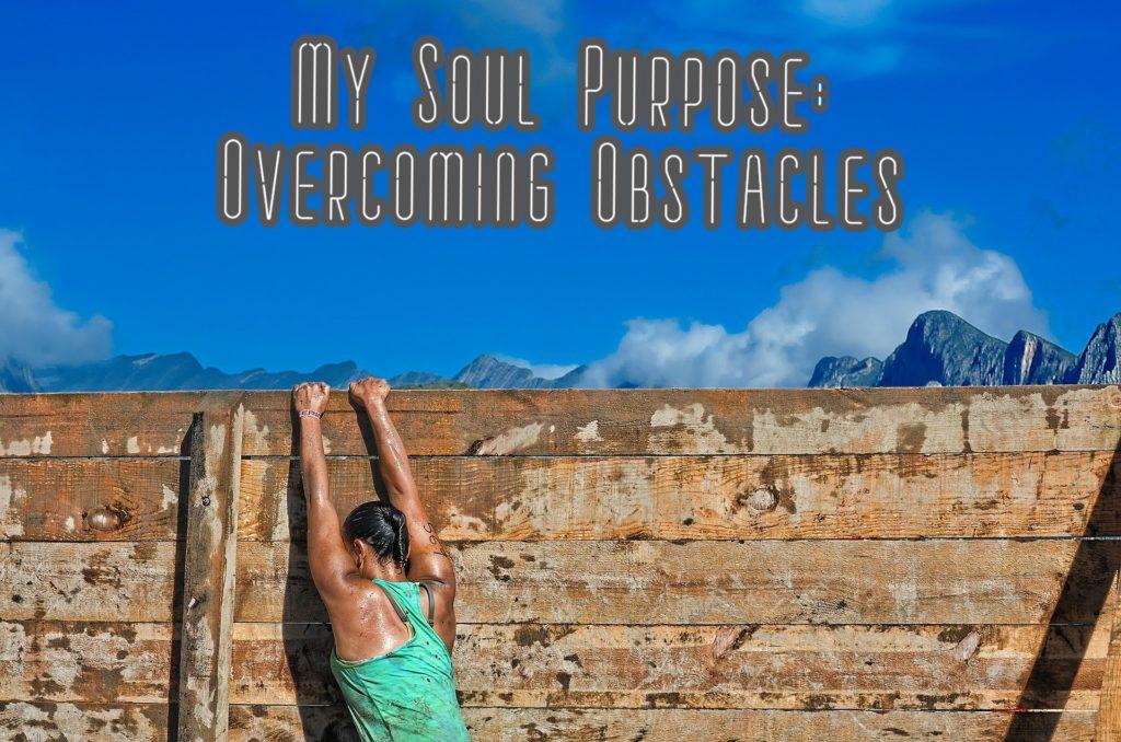 My Soul Purpose
